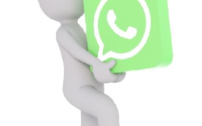NUEVO: WhatsApp en la tienda de JuJuJu Aquacenter