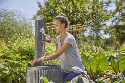 Destino jardín en jujuju aquacenter