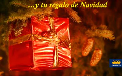 Ideas para regalar esta Navidad en la Costa Blanca🎅🎄🎁