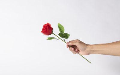 """Regalamos a las MAMA´s una ROSA para el """"Día de la Madre"""""""